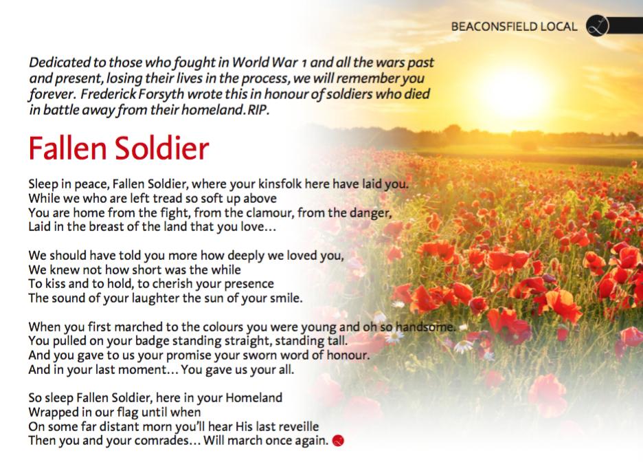 fallen-soldier-frederick-forsyth